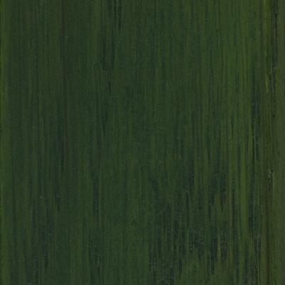 Žalia lazura RAL 6009
